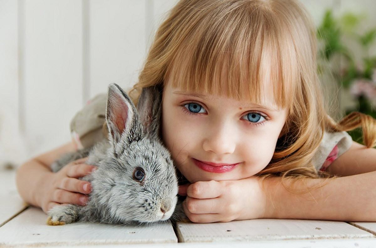 ta hand om kanin